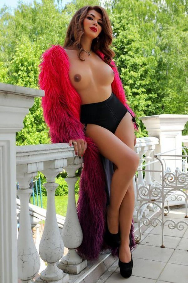 See photos of Shemale Aureliya in escort gallery